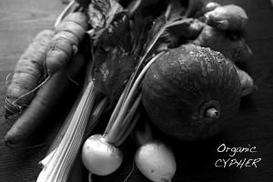 【2014 飲食】Cypher